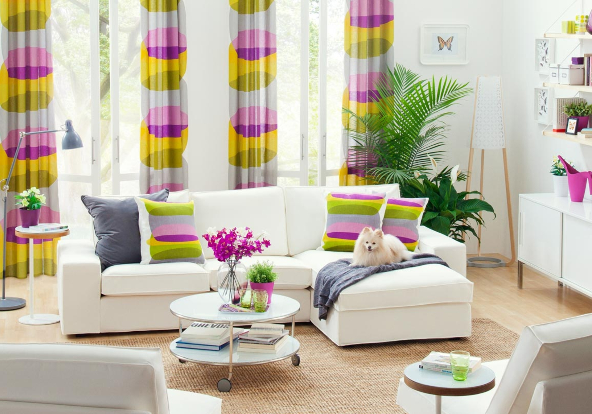awesome cheerfull interior design with cheap modern furniture