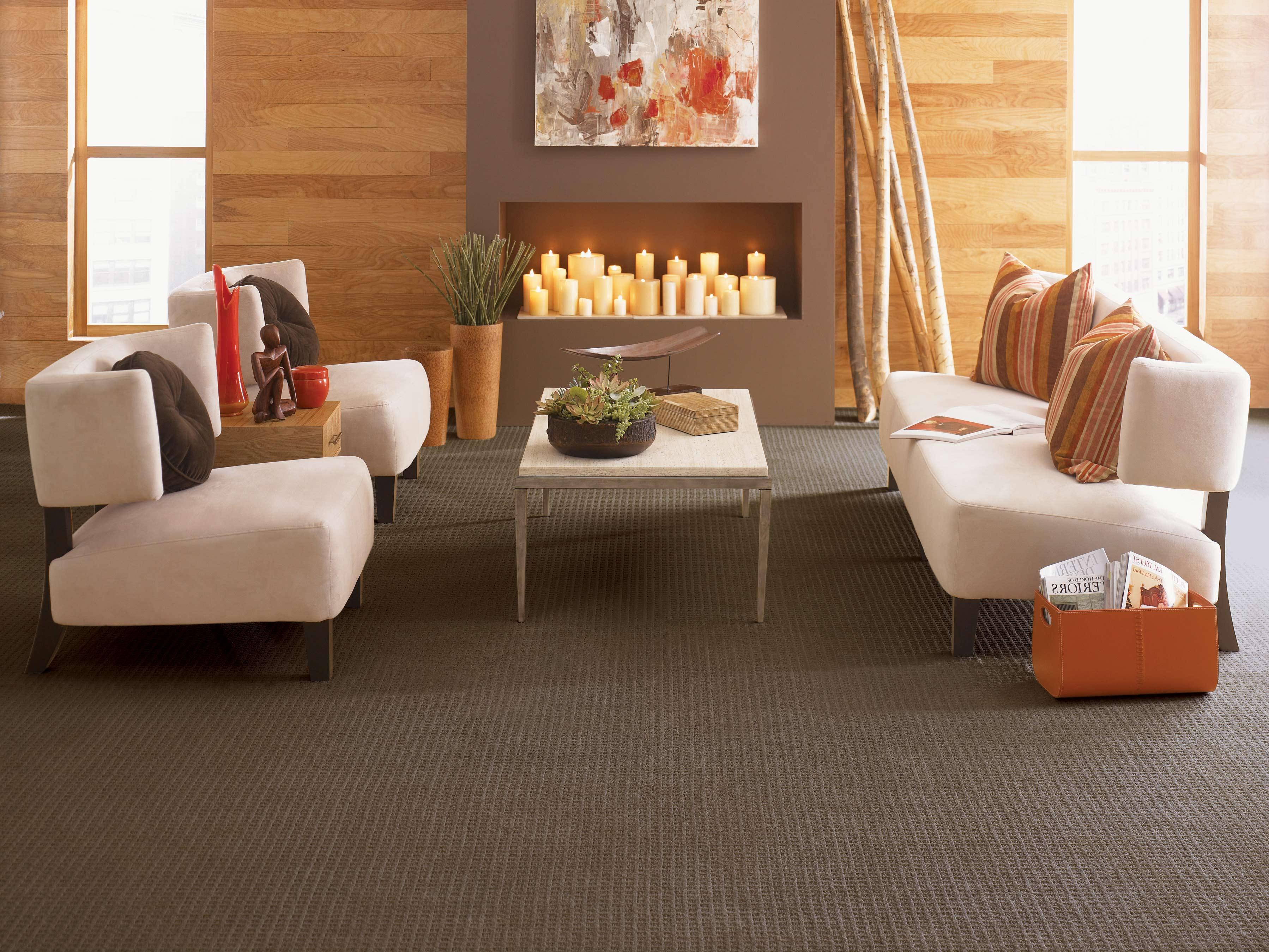 best modern black carpet for living room