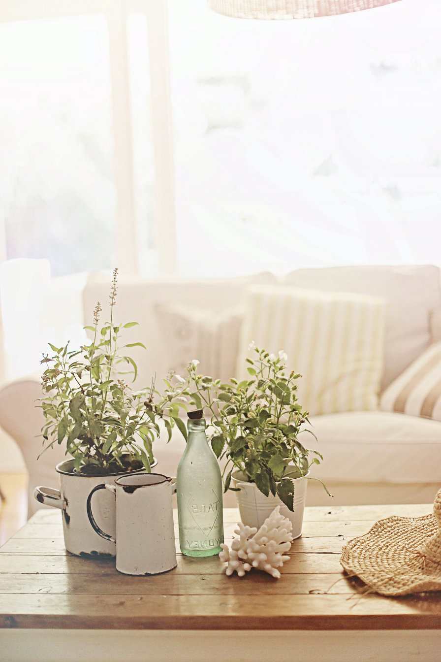beach themed coffee table decor inspirations