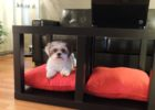 made coffee table dog bed