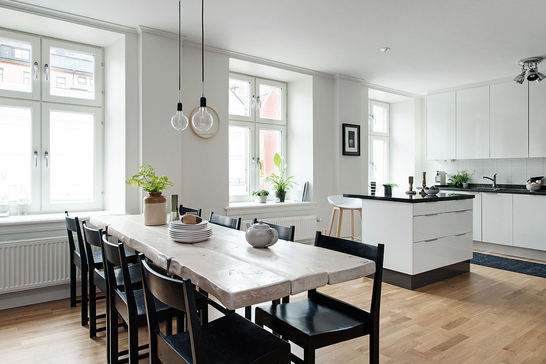 Black-and-White-Modern-Apartment kitchen decor theme ideas