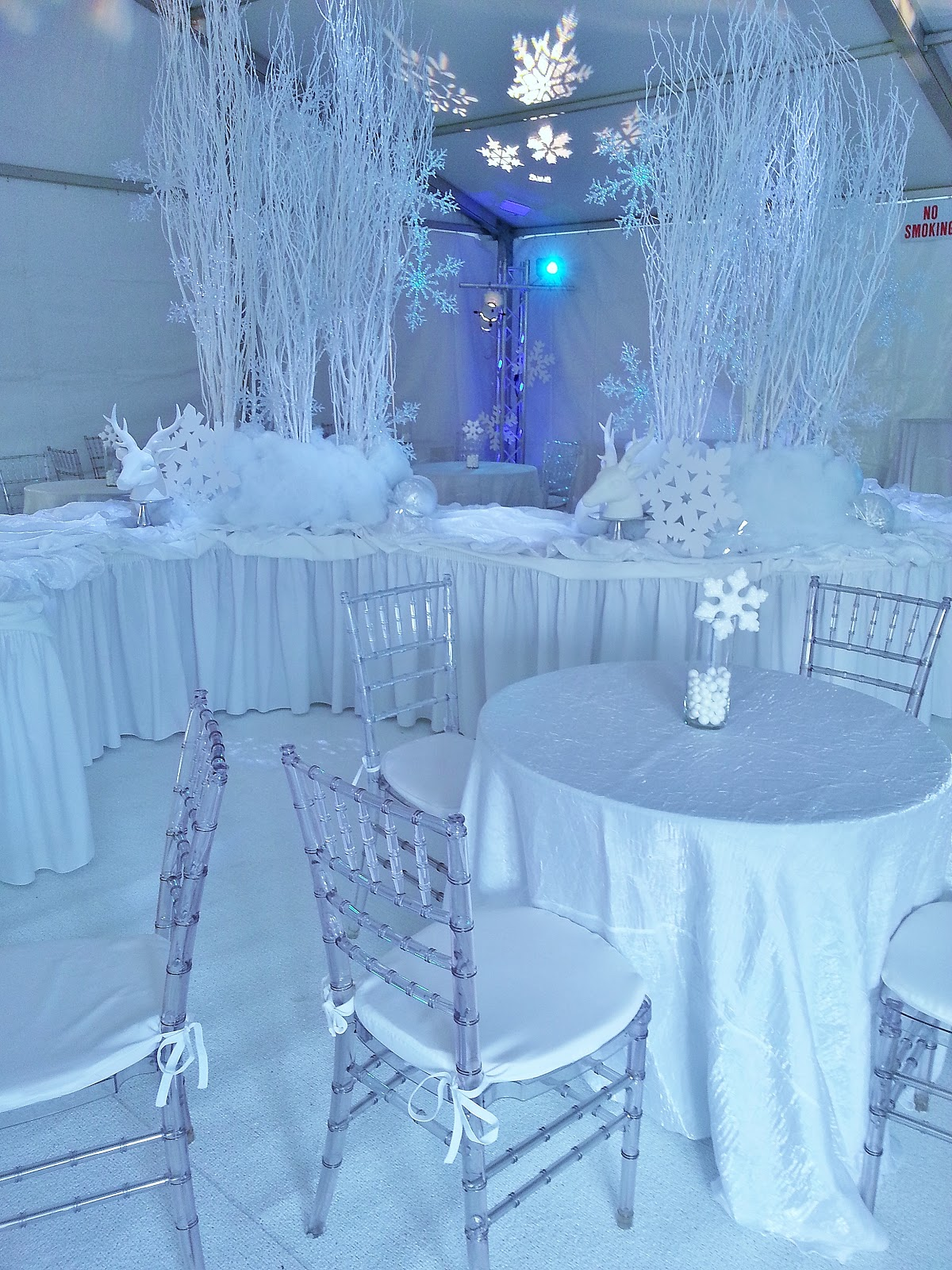 Winter Home Decor Ideas-interior-design-fresh-winter-themed-party-decorations-amazing
