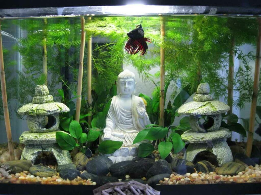 Authentic Asian Themed Fish Tank Decorations Ideas For Any Type Of Aquarium | Raysa House
