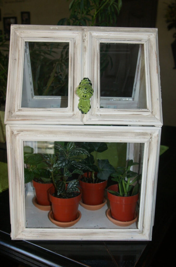 Looking For Inexpensive DIY Indoor Greenhouse? Here Are 3 Projects For You | Raysa House