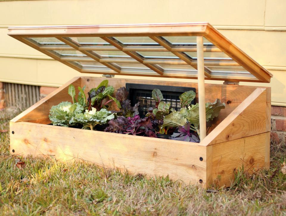 Five Low Budget And Easy DIY Small Greenhouse Solutions For You | Raysa House