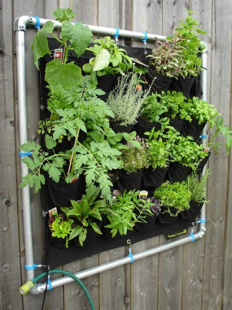 Check Out These 5 Indoor Greenhouse Kits You Should Own | Raysa House