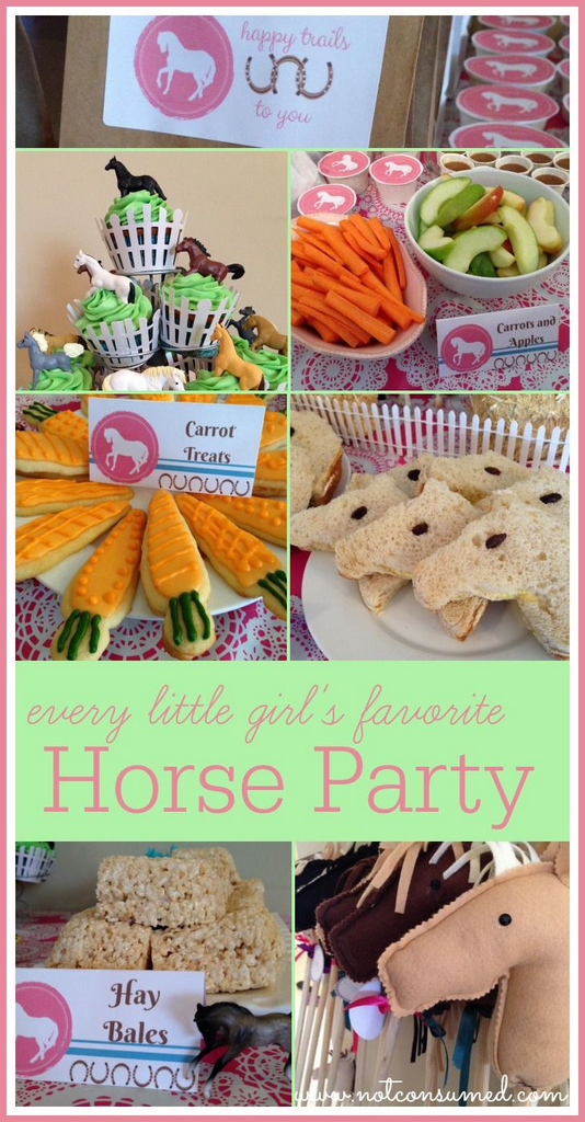 horse birthday party supplies-horse birthday party-pony party food ideas