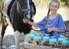 horse party favors Rustic Horse Birthday Party Party Ideas horse party food ideas