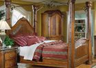 Unique Canopy Beds 16
